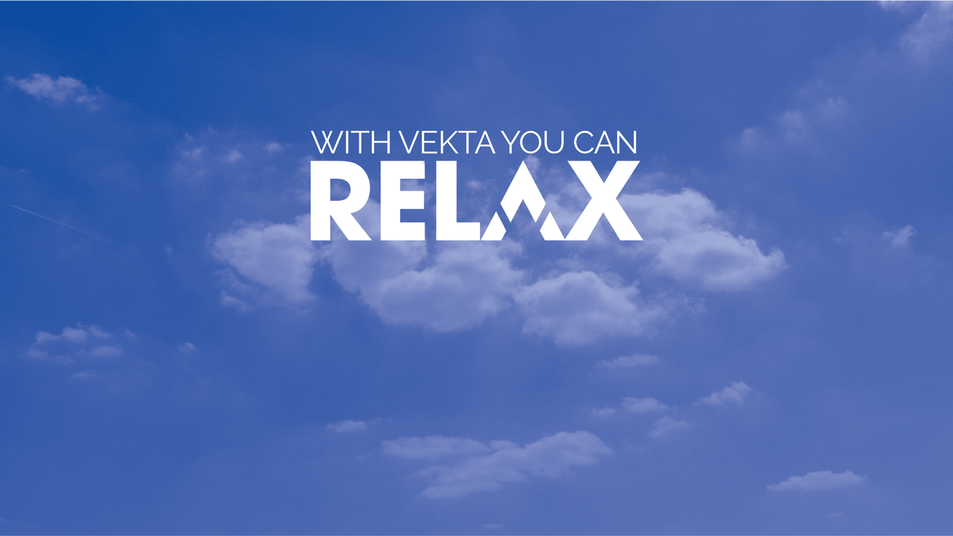 With Vekta You Can